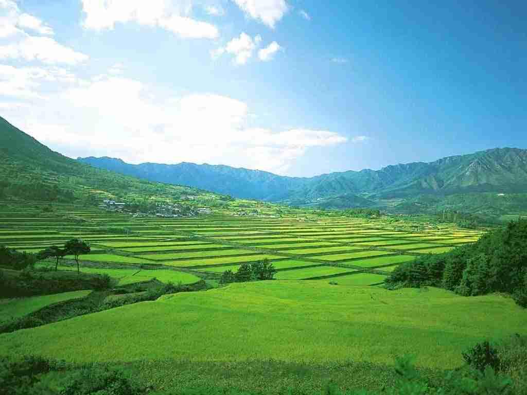 海南省出台省和市县总体规划  严格开发空间管控
