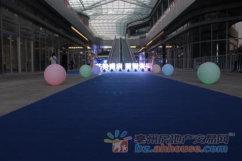 亳州中药材商品交易中心智慧药市品牌发布会圆满举行!