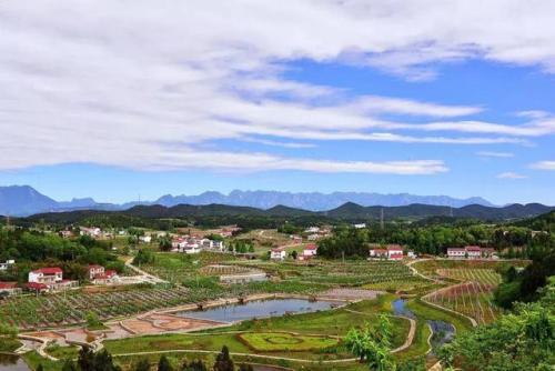 农业农村部:落实一户一宅、鼓励盘活闲置宅基地