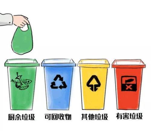合肥垃圾分类试点见成效 投放率从12%提升到77.21%