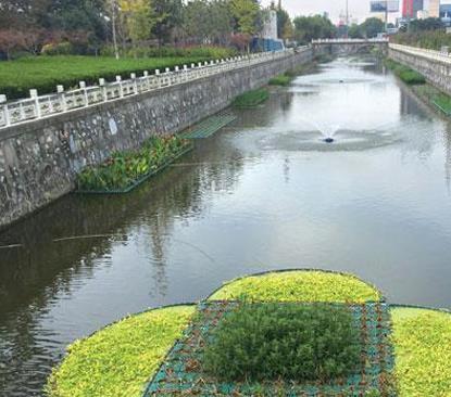 """""""初见成效"""" 芜湖入围全国黑臭水体治理示范城市"""