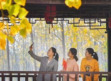 安徽11月11日一股强冷空气将到来 带来降温和降雨