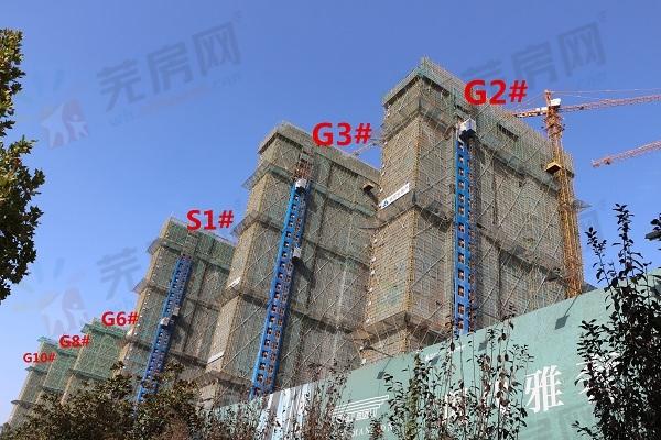 雅旭新乐府11月工程进度:G1#楼建至20层