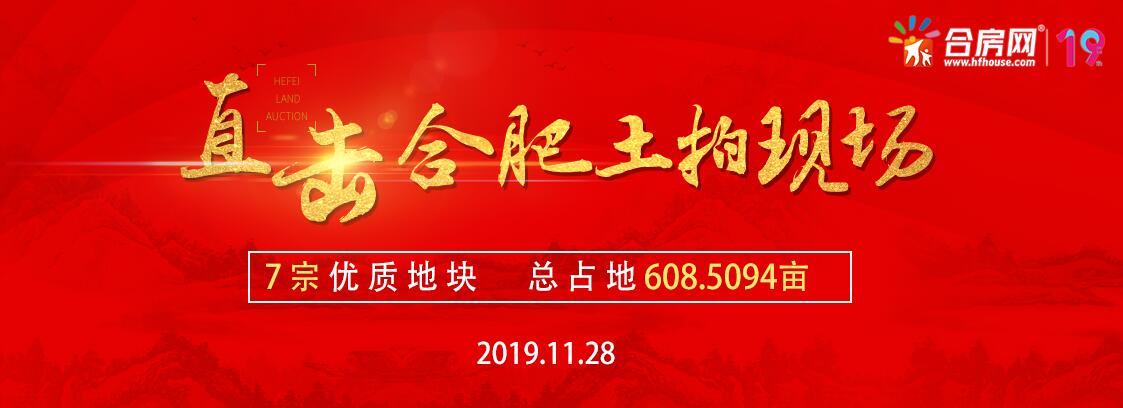 实录:合肥11月28日土拍揽金37.95亿!乐富强连下两子!置地杀入包河主城!