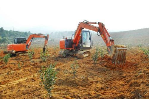 自然资源部:禁止违背农民意愿搞大拆大建