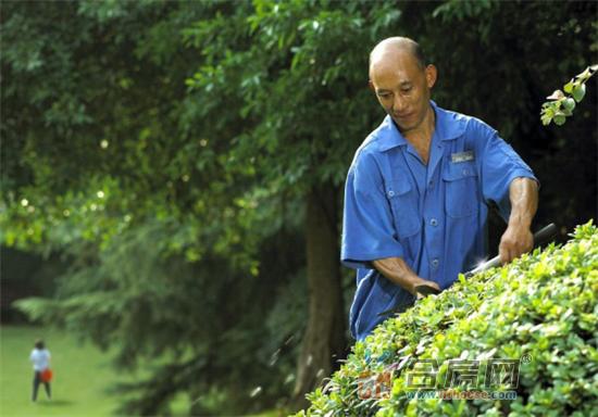 龙湖智慧服务,印鉴合肥品质生活642.png