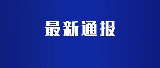安徽省教育厅:严禁提前开学 暂停一切集聚性活动