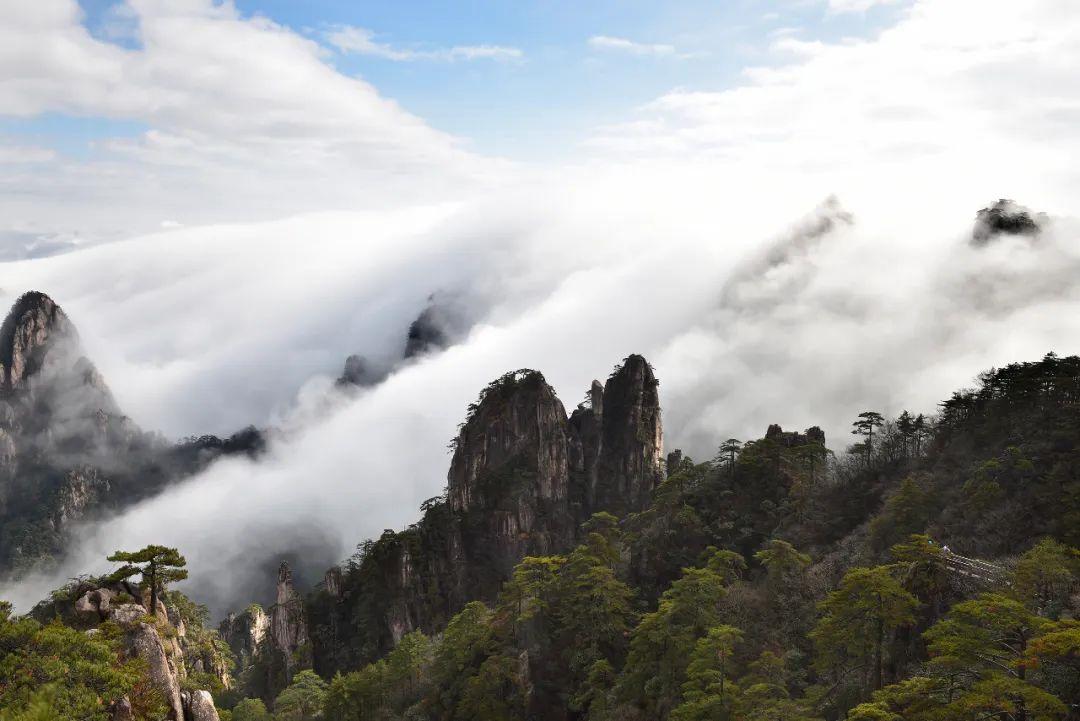 4月1日至14日,蚌埠人可免费游这些风景区!