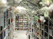 三部门联合印发通知 安徽支持高校实体书店建设