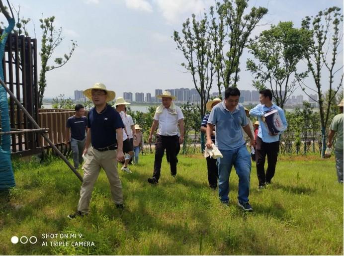 秦潭湖环境综合治理工程完成项目预验收