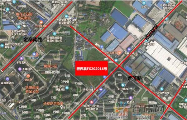 桃花源肥西县FX202016号地块交通图