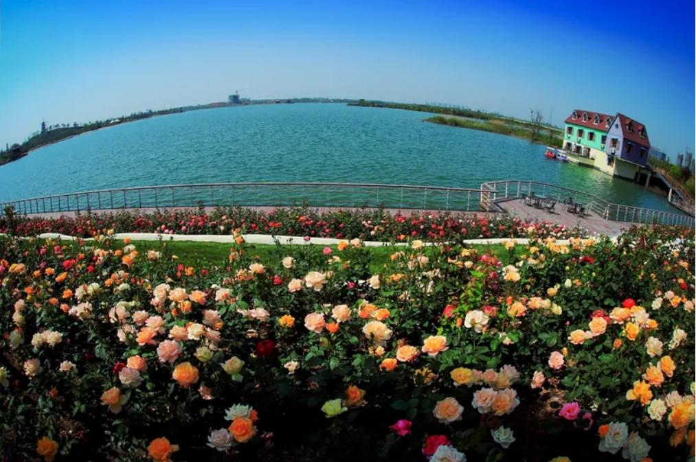 今年中秋国庆双节 合肥旅游市场全面复苏