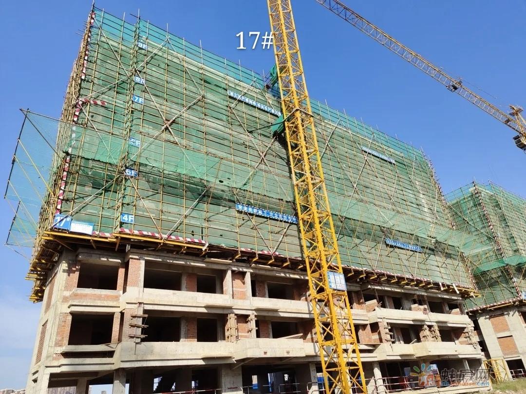 珍宝岛·雍景院9-11#主体结构封顶