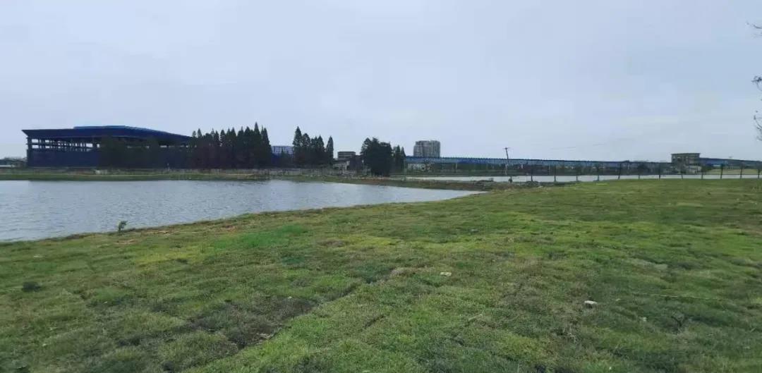 安庆又一生态公园下月全景亮相!休闲又有好去处啦~