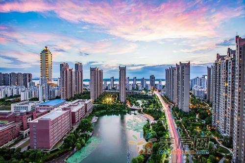 芜湖市2020年1-12月房地产市场分析报告!
